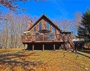 8966 Pheasant, Coolbaugh Township image