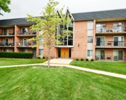 1104 North Mill Street Unit 310, Naperville image