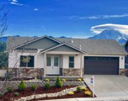 17711 Panorama Blvd E, Bonney Lake image