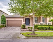 14524 Spotted Sandpiper Boulevard, Winter Garden image