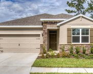 31662 Tansy Bend, Wesley Chapel image