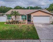 3115 Coventry Lane, Safety Harbor image