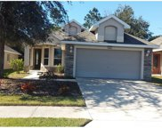 8965 Bridgeport Bay Circle, Mount Dora image