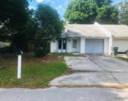 240 Village View Lane, Lakeland image
