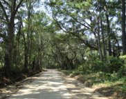 Lot 6 Jenkins Hill Road, Edisto Island image