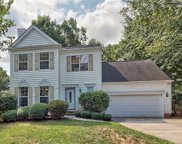111  Lyman Oak Court, Fort Mill image