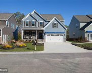11517 AUTUMN TERRACE DRIVE, White Marsh image