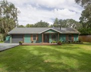 12041 Browns Canal Dr, Clermont image