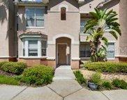 10401 Villa View Circle Unit 10401, Tampa image
