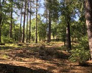 0  Ridgeway, Pollock Pines image