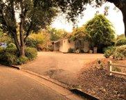 1619 Mulberry Ln, San Jose image