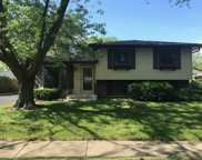 258 Blackberry Drive, Bolingbrook image