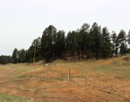 Lots 28 & 30R Wittrock, Custer image