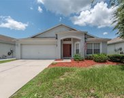 11610 Tropical Isle Lane, Riverview image