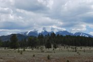 17404 Crowley Trail, Flagstaff image