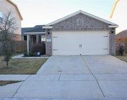 4729 Cedar Springs Drive, Fort Worth image