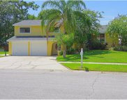 4705 Windflower Circle, Tampa image