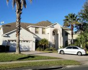 2999 Rambling Oaks Way, Kissimmee image