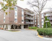 1331 South Finley Road Unit 115, Lombard image