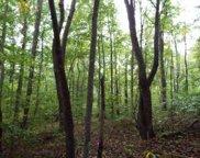 Bean Branch Rd, Wartburg image