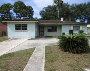 10926 N Arden Avenue, Tampa image