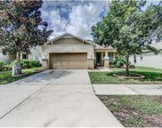 11119 Running Pine Drive, Riverview image