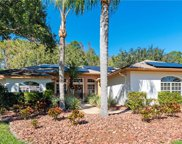 5679 Stag Thicket Lane, Palm Harbor image
