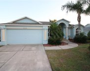 23750 Peace Pipe Court, Lutz image