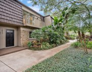 10607 Carrollbrook Way, Tampa image