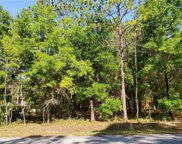 LOT 16 Sw 73rd Loop, Dunnellon image