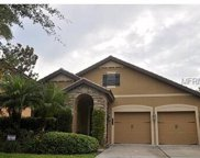 20310 Heritage Point Drive, Tampa image