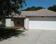 10313 Cayo Costa Court, Clermont image