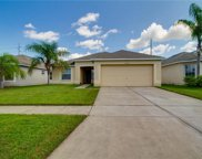8204 Carriage Pointe Drive, Gibsonton image