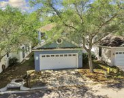 8804 Gracewood Way, Tampa image