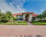 12311 Water Oak Dr, Estero image