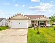 1300 Teal Ct., Conway image