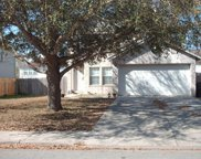 410 Thicket Ln, Kyle image
