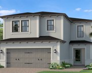19579 Roseate Drive, Lutz image
