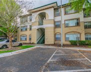 17108 Carrington Park Drive Unit 710, Tampa image