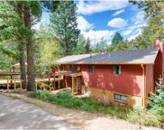 28375 Squirrel Lane, Conifer image
