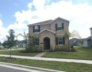 10007 Lovegrass Lane, Orlando image