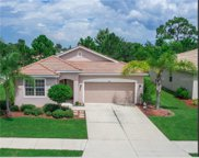 6390 Falcon Lair Drive, North Port image