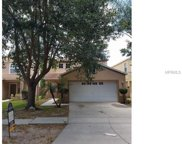1723 Mosaic Forest Drive, Seffner image