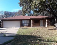 109 Redhaw Court, Burleson image