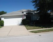 3275 Fiddle Leaf Way, Lakeland image