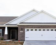 16569 Winter Meadow  Drive, Fishers image