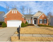 41157  Calla Lily Street, Indian Land image