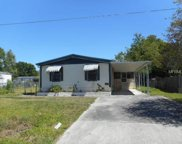 1131 Pineapple Way, Kissimmee image