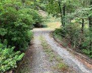 2940 Hogback Mountain  Road, Tryon image