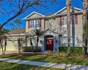 16171 Colchester Palms Drive, Tampa image